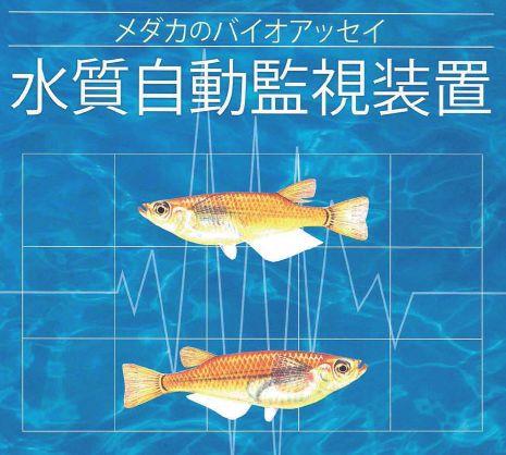 魚センサー